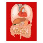 Mi tripa, órganos digestivos membrete a diseño