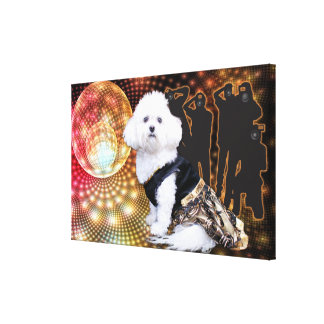 Mia - a Bichon Frise January New Year's Photo Gallery Wrapped Canvas