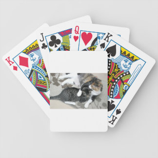 Mia & Gizmo Bicycle Playing Cards