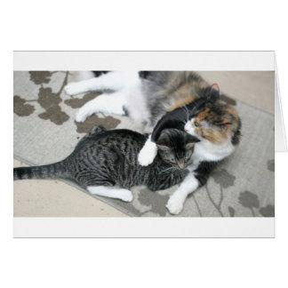 Mia & Gizmo Card