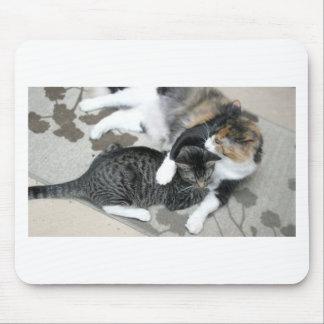 Mia & Gizmo Mouse Pad