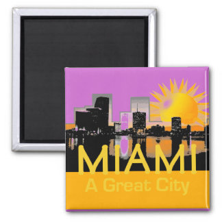 MIAMI A Great City Magnet