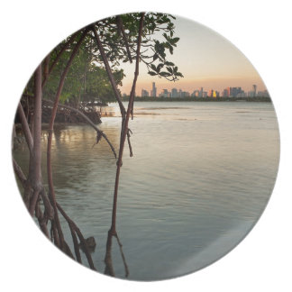 Miami and Mangroves at Sunset Dinner Plate