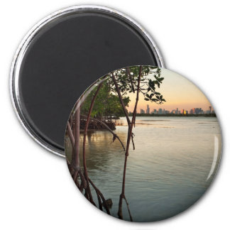 Miami and Mangroves at Sunset Magnet