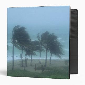 Miami Beach, Florida, hurricane winds lashing Binder