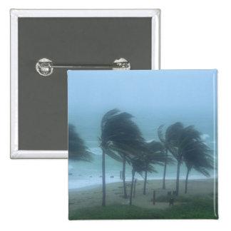 Miami Beach, Florida, hurricane winds lashing Button