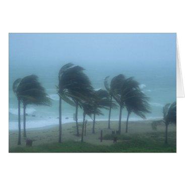 DanitaDelimont Miami Beach, Florida, hurricane winds lashing Card