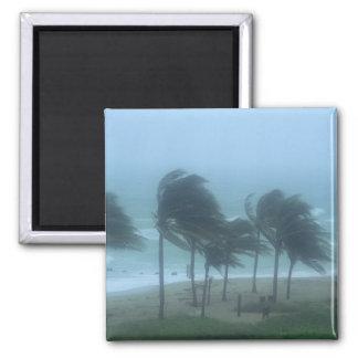 Miami Beach, Florida, hurricane winds lashing Magnet