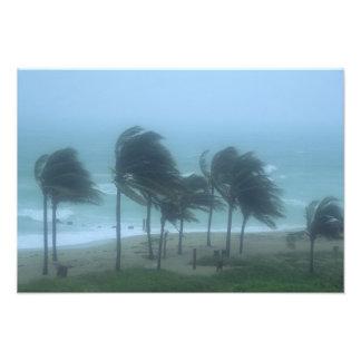 Miami Beach, Florida, hurricane winds lashing Photo Art