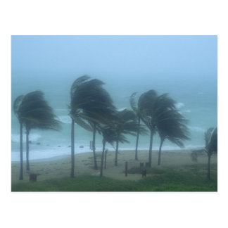 Miami Beach, la Florida, el azotar de los vientos Postales