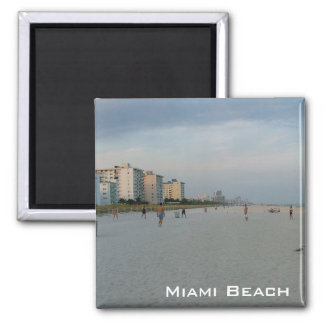 Miami Beach Fridge Magnets