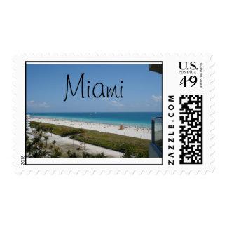 Miami Beach Envio
