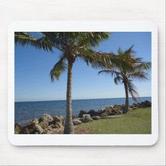 Miami Beach Alfombrilla De Raton