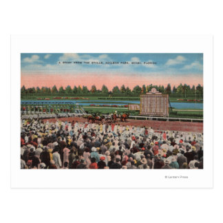 Miami, FL - View of Hialeah Park with Horse Post Card