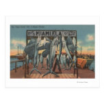 Miami, Florida - View of Pier 5 with Caught Fish Post Cards