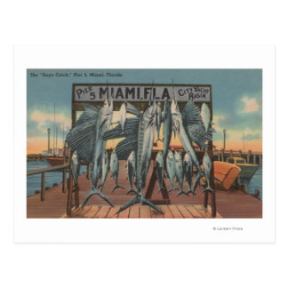 Miami, Florida - View of Pier 5 with Caught Fish Postcard