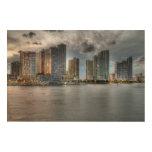Miami, la Florida Impresión En Madera