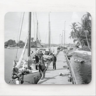 Miami Sailboats, 1905 Mouse Pad