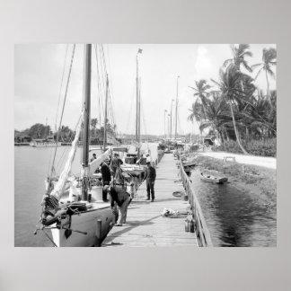 Miami Sailboats 1905 Poster