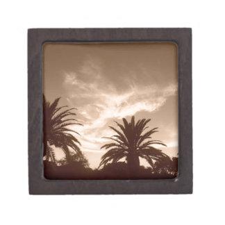 Miami Sepia Treetops Gift Box