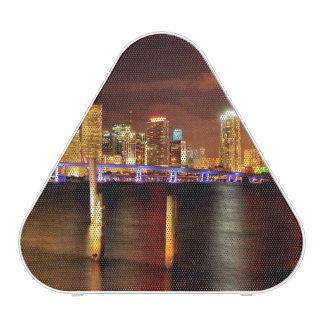 Miami skyline at night, Florida Bluetooth Speaker