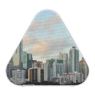 Miami skyscrapers against wide clear sky speaker