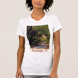 Micanopy, la Florida Playera
