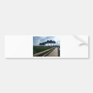 Micanopy  paynes prairie bumper stickers