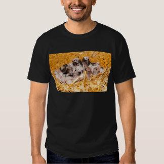 mice-3958 camisas