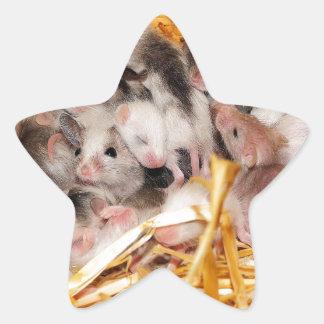 mice-3958 pegatinas forma de estrella