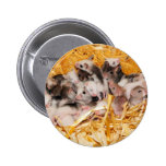 mice-3958 pin