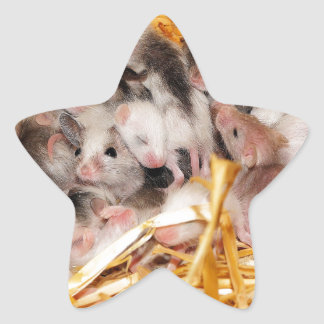 mice-3958 star sticker