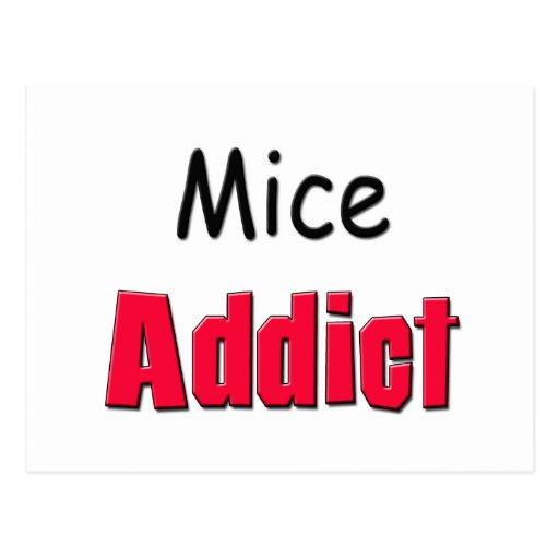 Mice Addict Post Cards
