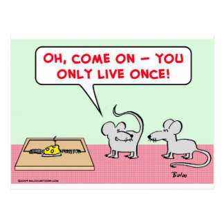 mice mousetrap only live once postcard