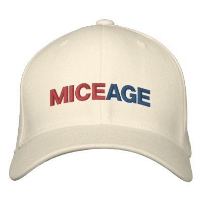 MiceAge Embroidered Hat