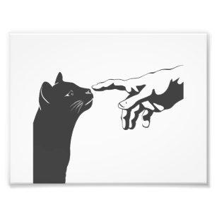 Michelangelo Cat Choose Background Color Photo Print Zazzle Com
