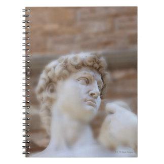 Michelangelo's statue DAVID detail close up view Notebook
