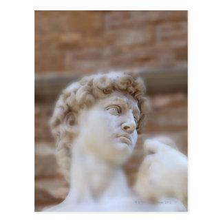 Michelangelo's statue DAVID detail close up view Postcard