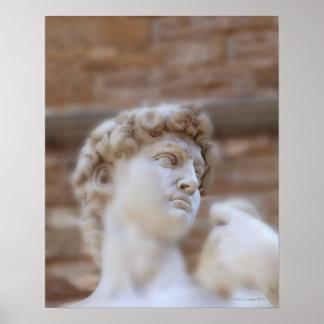 Michelangelo's statue DAVID detail close up view Poster