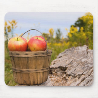 Michigan Apples Mouse Pad