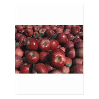 Michigan Apples Postcard