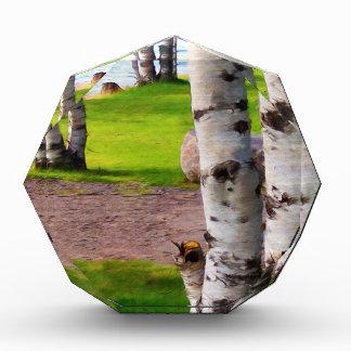 Michigan Birch Trees By Lake Acrylic Award
