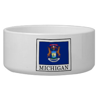 Michigan Bowl