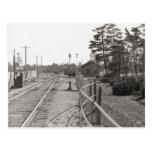 Michigan Central Railroad Yard Postcard