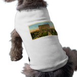 Michigan Central Station Detroit, Michigan Pet Tee