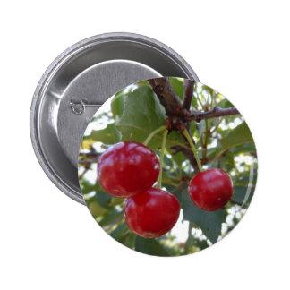 Michigan Cherries Button