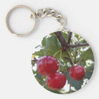 Michigan Cherries Keychain
