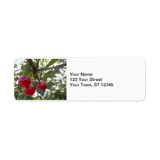 Michigan Cherries Return Address Label