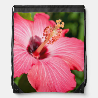 Michigan, Dearborn. Detail Of Pink Hibiscus Drawstring Bag
