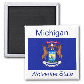 Michigan Flag Magnet